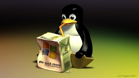 2084079347_37a70ed7_linux2.jpg